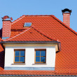 Tiled roof — Stock Photo #10953084