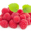 Raspberry — Stock Photo #10953094