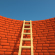 Ladder - Stock Photo
