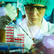 Stock Photo: Biological research