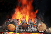 Night fire — Stock Photo