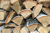 Birch firewood — Stock Photo