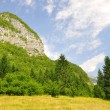 Triglav National Park - JuliAlps, Slovenia — Stock Photo #10787239