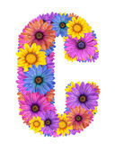 Alphabet from colorful dewy flowers — Stock Photo