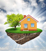 Small island with house and tree — Stock Photo