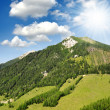 Austrian Alps — Stock Photo #11537466