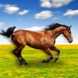 Running horse - Stock Photo