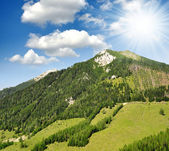 Austrian Alps — Stockfoto