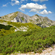 JuliAlps, Slovenia — Stock Photo #11640191