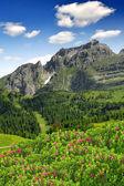Brenta-Dolomites Italy — Stock Photo