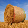 Straw bales — Stock Photo #11794236