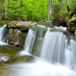 Beautiful waterfalls — Stock Photo