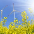 Rapeseed field with wind turbine - Stock Photo