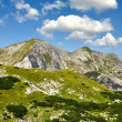 JuliAlps, Slovenia — Stock Photo #12022464
