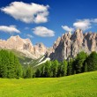Dolomite peaks, Rosengarten — Stock Photo #12022505