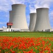 Постер, плакат: Nuclear power plant Temelin