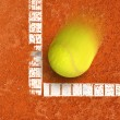 Tennis ball — Stock Photo #12022565