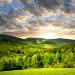 Spring landscape — Stock Photo #12258905