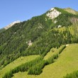 Austrian Alps — Stock Photo #12258953