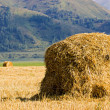 Stock Photo: Straw stack in field
