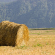 Royalty-Free Stock Photo: The straw bale in the field
