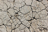 The dry soil — Stock Photo