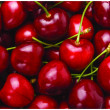 Foto de Stock  : Fresh Red Cherry