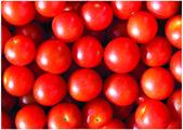 O tomate de cereja fresco — Foto Stock