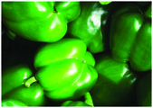 The fresh green pepper — Stock Photo