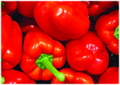 The fresh red pepper — Foto Stock