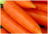 świeże carots — Zdjęcie stockowe