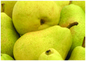 The fresh yelow pears — Stock Photo