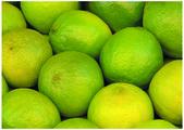 O limão fresco e colorido — Foto Stock