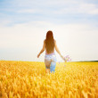 Girl is picking flowers on the yellow field — Stock Photo #11511587