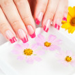 Woman hands with pink manicure. manicure tray — Stock Photo