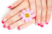 Woman hands with pink manicure — Stock Photo