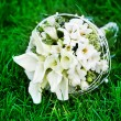 White wedding flowers on the green grass — Stock Photo