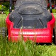 Lawnmower — Stock Photo #11291829