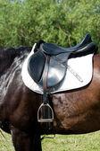 Horse saddle — ストック写真
