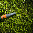 Lawn Maintenance And Garden Care - Stock Photo