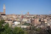 Siena, toscana, italia — Foto Stock