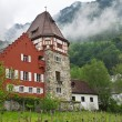 Old house in the Principality of Liechtenstein — Stock Photo