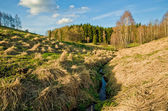 Landscape with stream — ストック写真