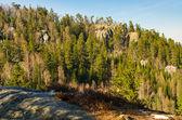 скалистый лес — Стоковое фото