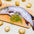 Pike — Stock Photo