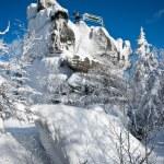View point rock on Szczeliniec Mountain — Stock Photo