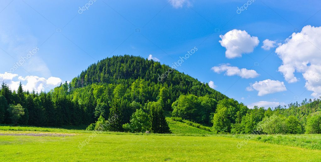 Lonely hill covered by forest — Stock Photo #11735020
