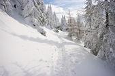 ścieżka śnieg — Zdjęcie stockowe