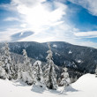 Stock Photo: Winter panoramin hills