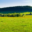Spring panorama with village — Stock Photo